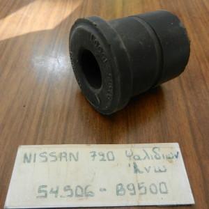 DSCN1829